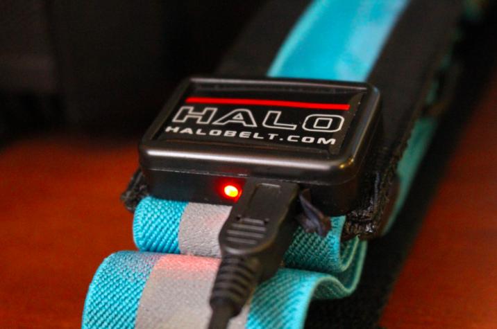 halo belt 2
