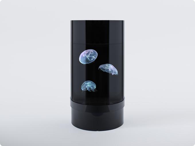 jellyfish aquarium leuchtende quallen lampe als nachtlicht. Black Bedroom Furniture Sets. Home Design Ideas