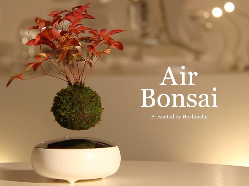 air bonsai 3 1024x768
