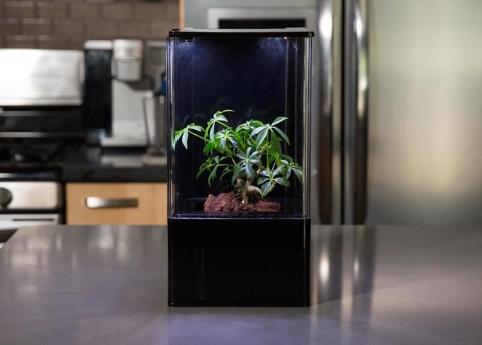 EcoQube Air Vereint Alles, Was Es Normalerweise Für Professionelle  Indoor Pflanzenzucht Benötigt: Luftfilter, Befeuchter, Passendes Licht, ...