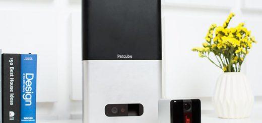 PetcubeBitePlay