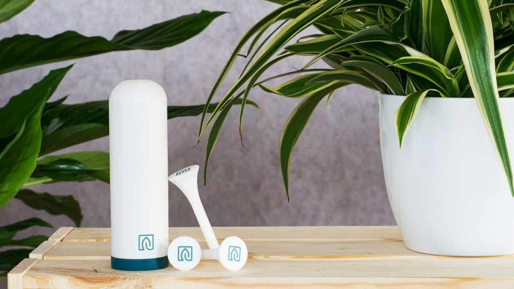Ohne Grünen Daumen: Växt Hilft Beim Gießen Von Pflanzen Pflanzen Fur Frische Luft Nutzen