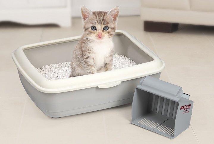 Kleines Katzenklo katzenklo klein katzenklo klein katzenklo mit streu und ein
