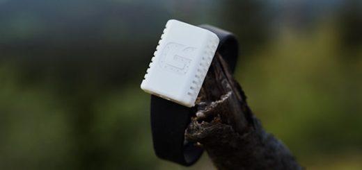 Bandito Armband auf Ast 520x245