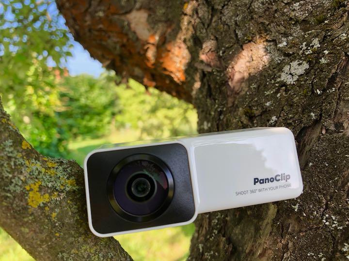 PanoClip im Baum