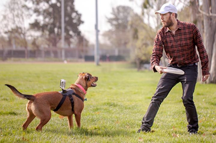 Wunder360 Kamera auf Hund mit Mann