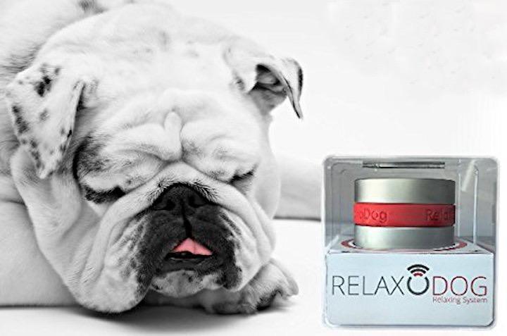relaxopet entspannungssystem