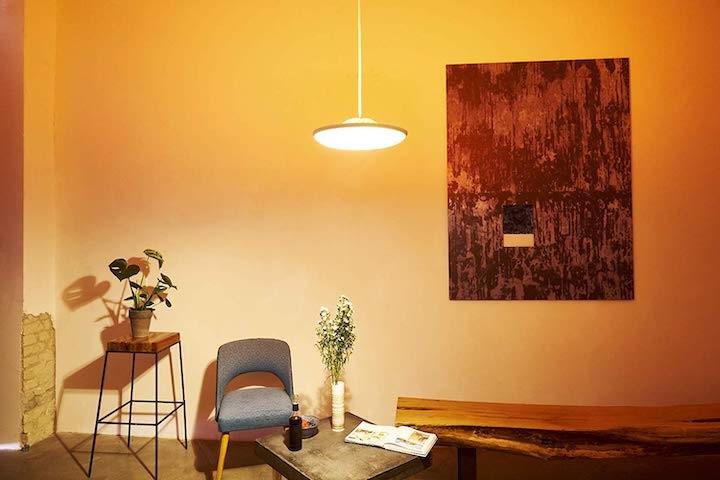 Smarte Hängelampe Stuhl Bild Tisch Pflanze