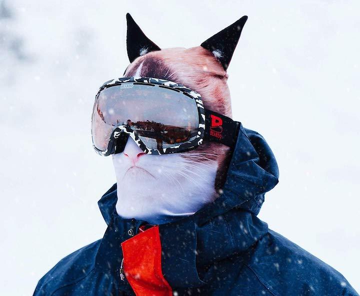 Beardo Maske Katze Skibrille