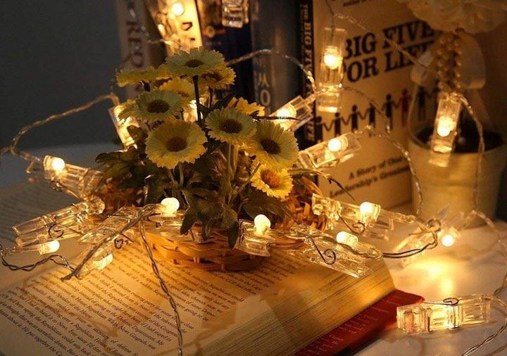 Blumen Buch Lichterkette