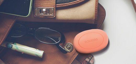 Squegg Brille Tasche 520x245