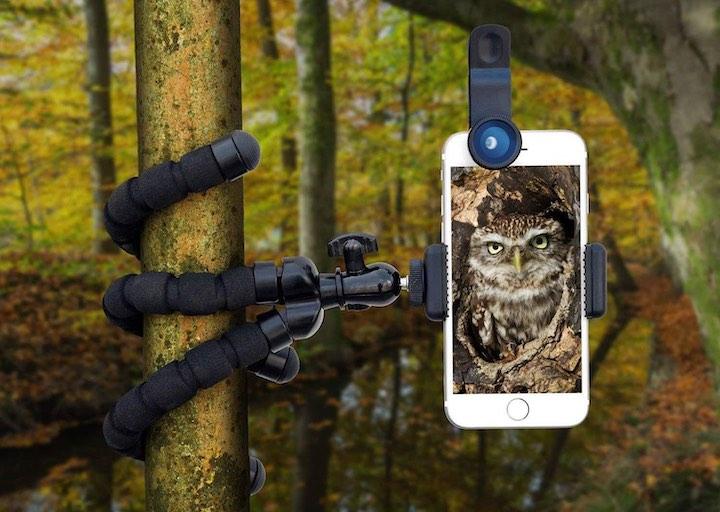 iPhone Baum Stativ