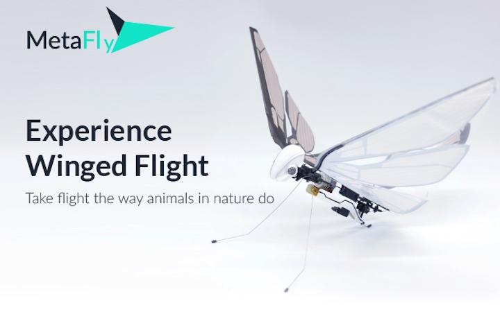 MetaFly fliegt wie ein Insekt