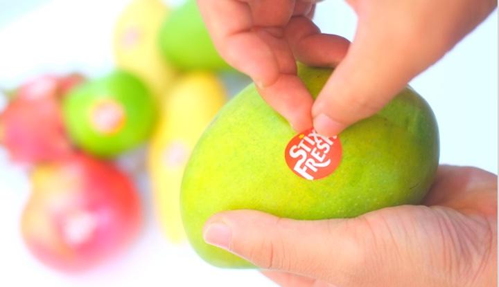 StixFresh auf Mango