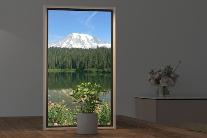 Atmoph Window 2 Pflanze