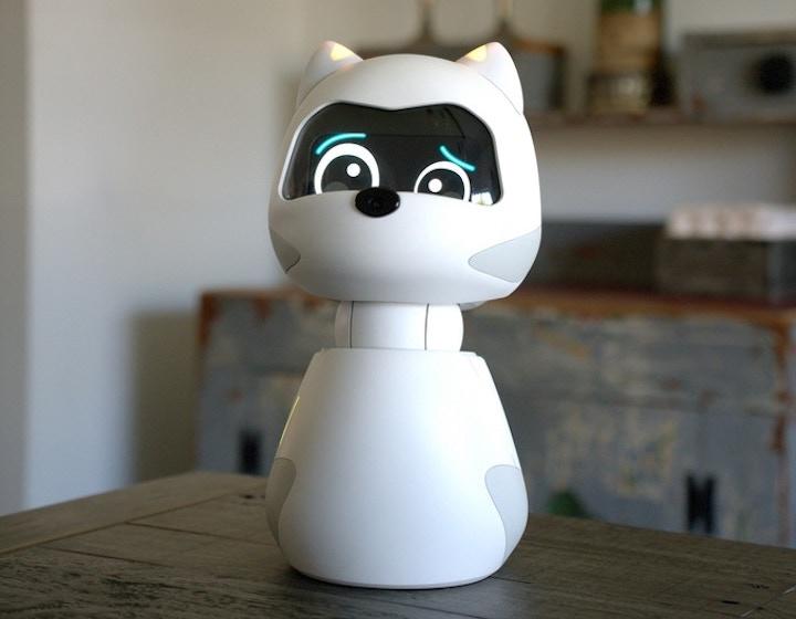 KIKI Roboter mit Bildschirm