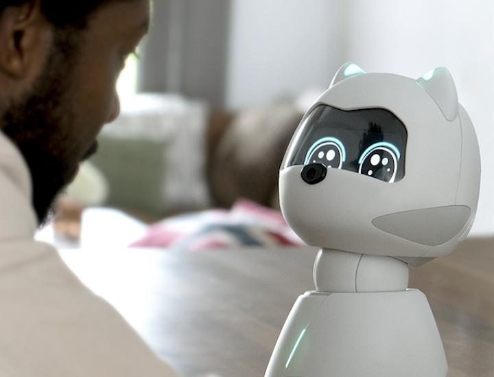 KIKI Roboter mit Gesichtererkennung