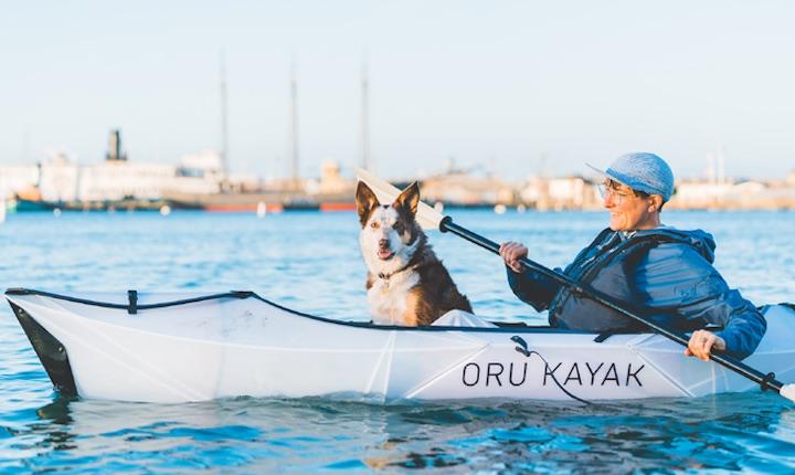 Mann mit Hund in Oru Kayak Inlet
