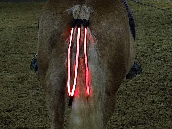 LED R%C3%BCcklicht Pferd in Schweif