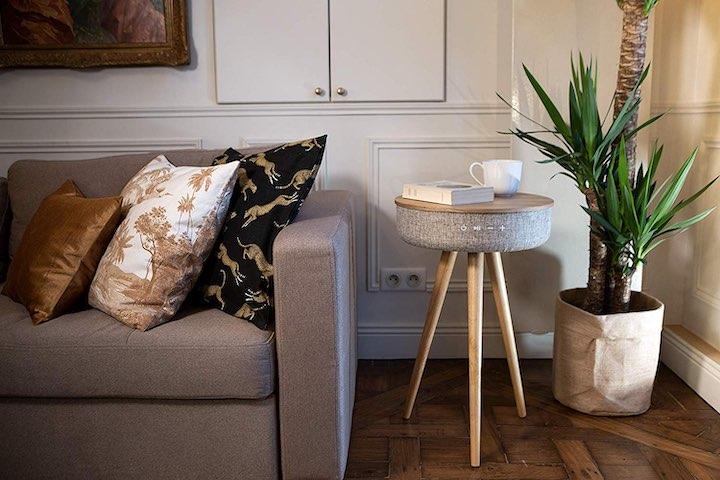 Victrola Couchtisch Kissen Sofa Pflanze