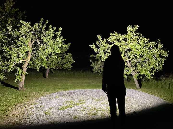 Frau steht vor bleuchteten Baeumen im Dunkeln