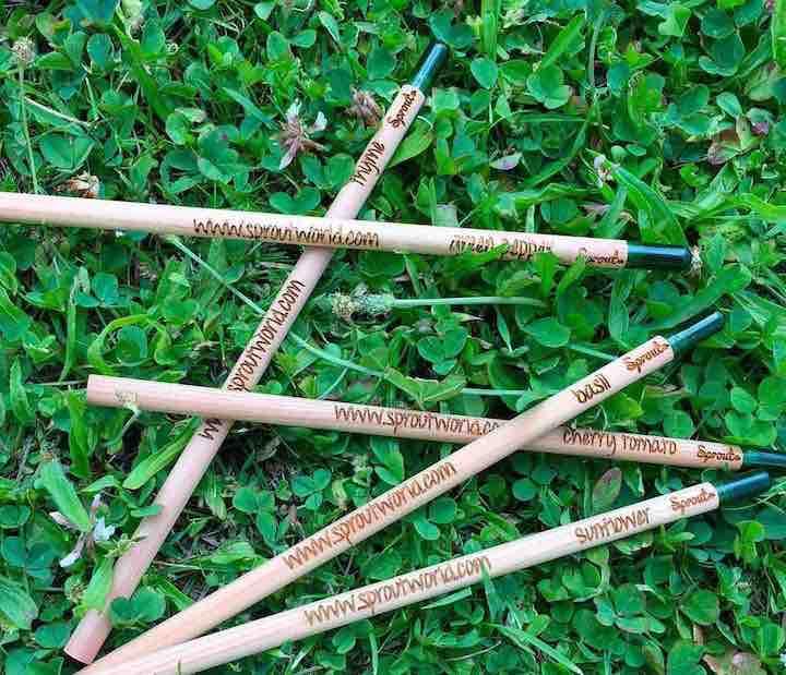 Sprout Stifte liegen im Gras