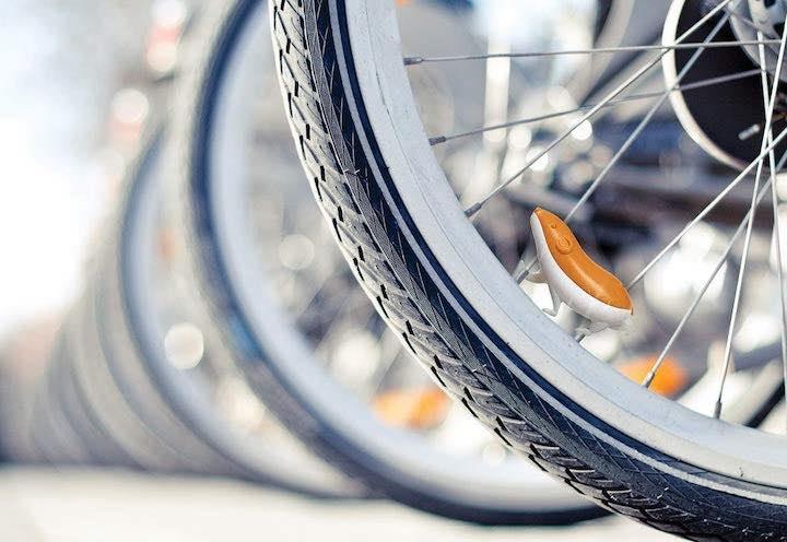 Hamster in Fahrradspeiche
