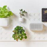 Cliclap an der Wand mit Pflanzen und Radio 160x160
