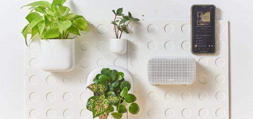 Cliclap an der Wand mit Pflanzen und Radio 520x245