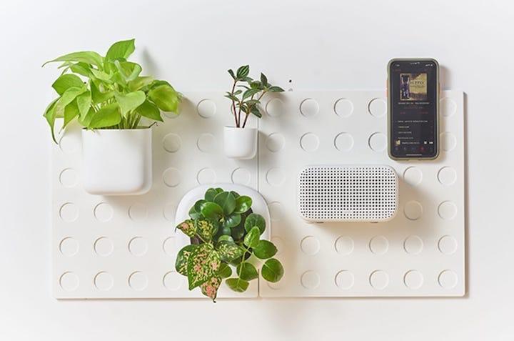 Cliclap an der Wand mit Pflanzen und Radio