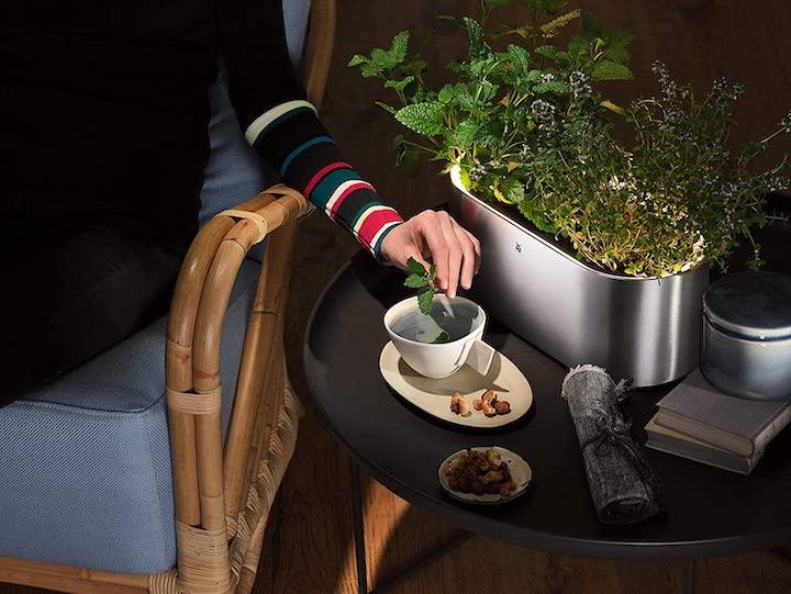 WMF Ambient Kraeutertopf mit Tee und Pflanzen