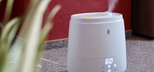 TaoTronics Luftbefeuchter steht neben einer Pflanze vor einer roten Wand 520x245