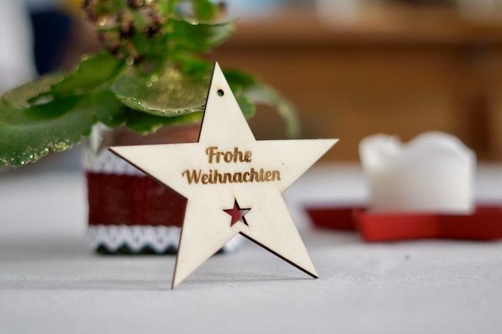 Stern mit Frohe Weihnachten Gravur vor einer Pflanze