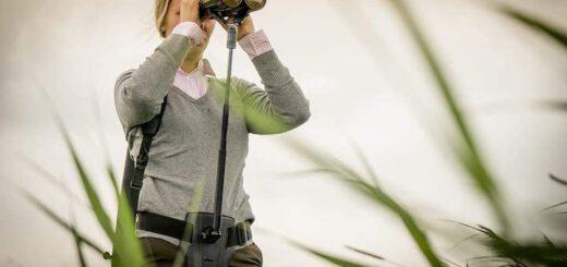 Frau nutzt Steadify mit Fernglas 520x245