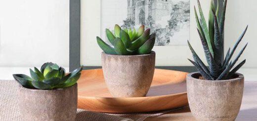 Kuenstliche Pflanzen von OUNONA vor einem Bild 520x245