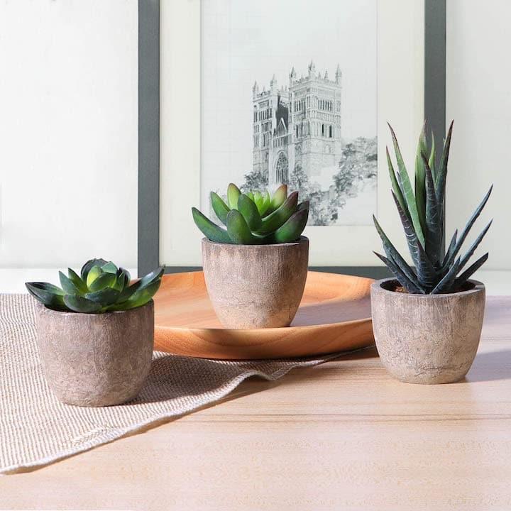 Kuenstliche Pflanzen von OUNONA vor einem Bild