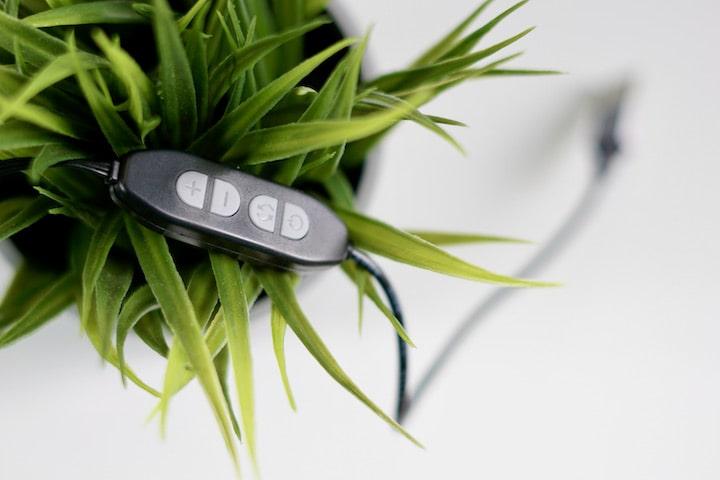 Bedienfeld mit vier Tasten liegt in einer gruenen Pflanze