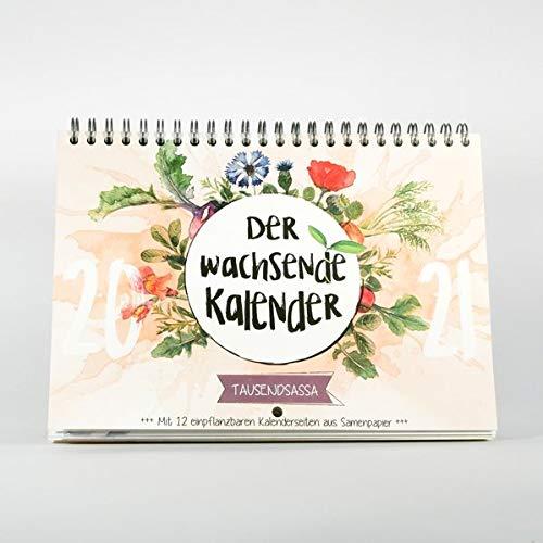 Deckblatt vom stehenden Primoza Kalender