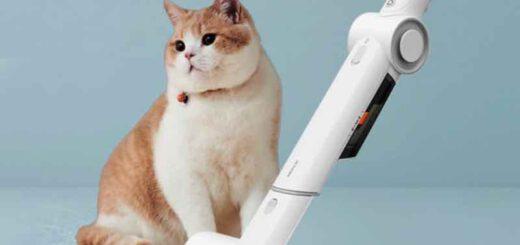 Katze mit Tierhaarentferner 520x245