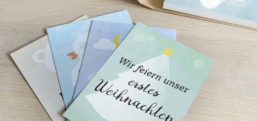 Meilensteinkarten fuer Zwillinge Beispiele 520x245