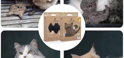 Katzen mit nachhaltigem Spielzeug 520x245