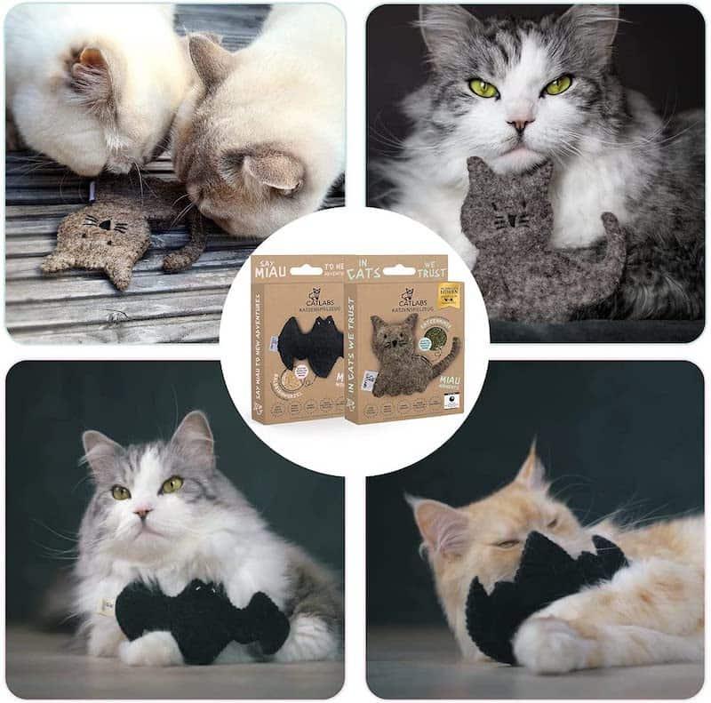 Katzen mit nachhaltigem Spielzeug